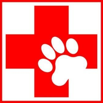 first aid sign for pets