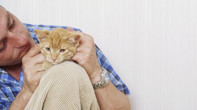 Ten Cat Tips that Might Surprise New Owners