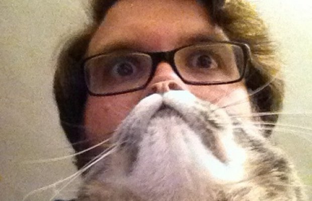 ay_110412567 cat beards meme is the news internet craze sweeping the world