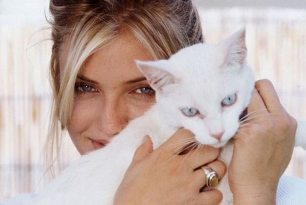 20 Celebrities Who Love Their Cats