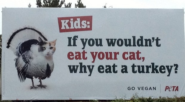 The Cutest Cat Ads as Created by PETA