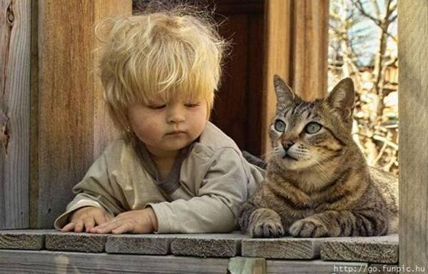 10 Tips to Help Your Child and Your Cat Get Along Well