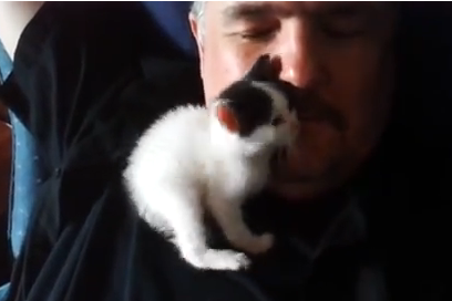 Cat Video of the Day:  Soft Kitty, Warm Kitty Actually Works