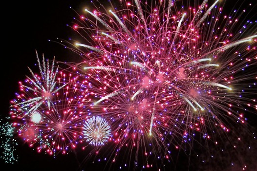July 4th Tips to Keep Your Cat Safe During the Holiday