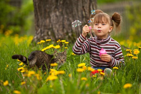 Играть девочка котик