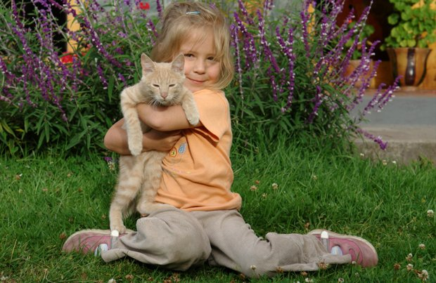Cats Can Improve Mental and Physical Health for Kids