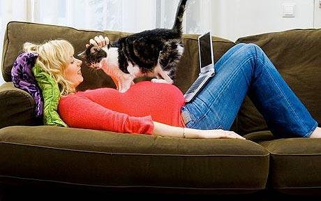 The 10 Worst Tips for Cat Owners