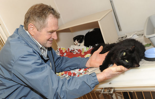 Man is Reunited With Cats Missing After Car Crash