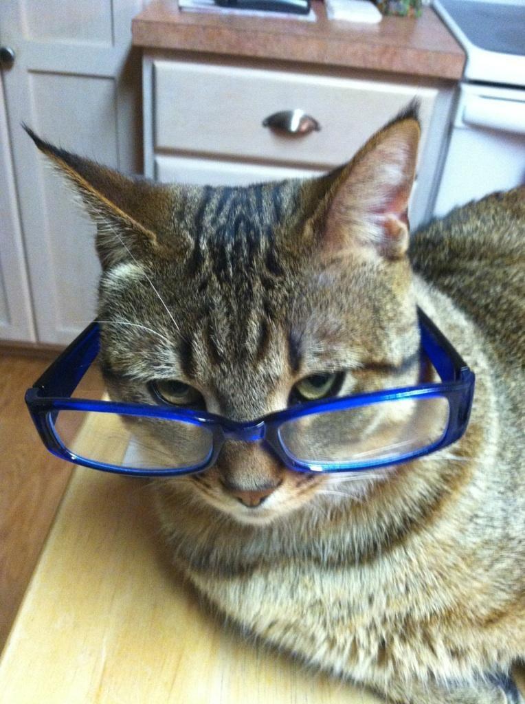 Tony's Reading Glasses
