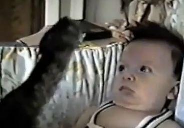 A Kitten Hypnotizes a Baby