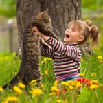hugging cat