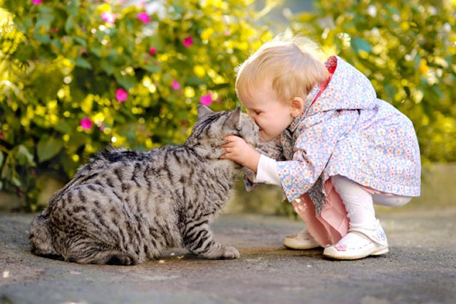 Baby and Kitty