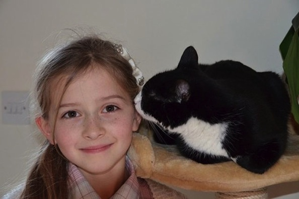 Pippa the Rescue Cat Makes Sure Young Diabetic Owner is Fine