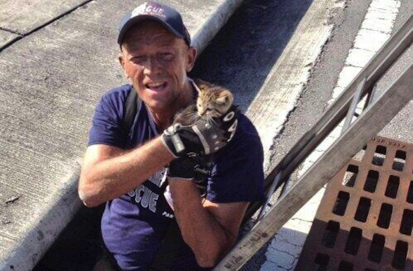 Stormy the Kitten Rescued After Broward Firefighters Heard Cries Down the Drain