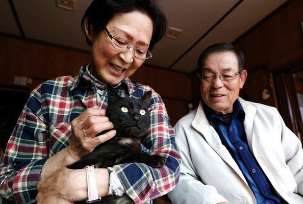 Lost Cat Reunites With Owners After Going Missing For Over 3 Years