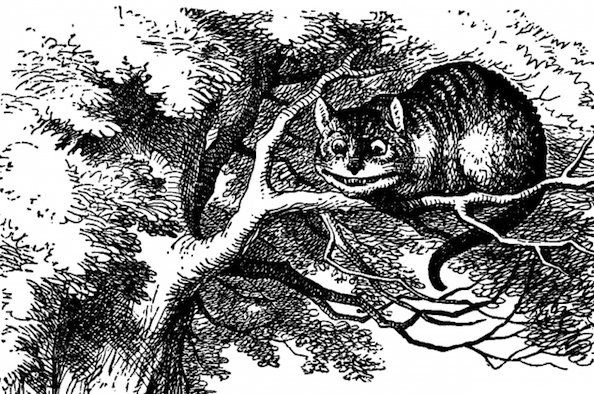 """""""Quantum Cheshire Cat"""" Phenomenon Observed For First Time"""