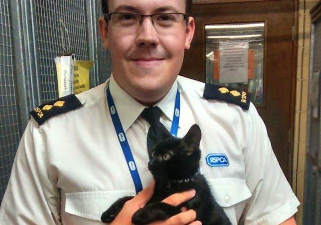 Man Abandons His Kitten on a Train