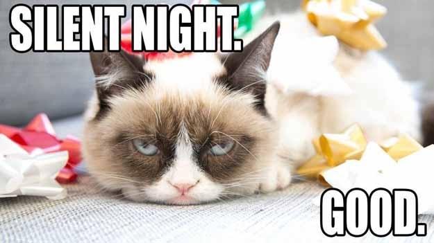 Grumpy Cat 4 five grumpy cat memes for the holiday season kittentoob