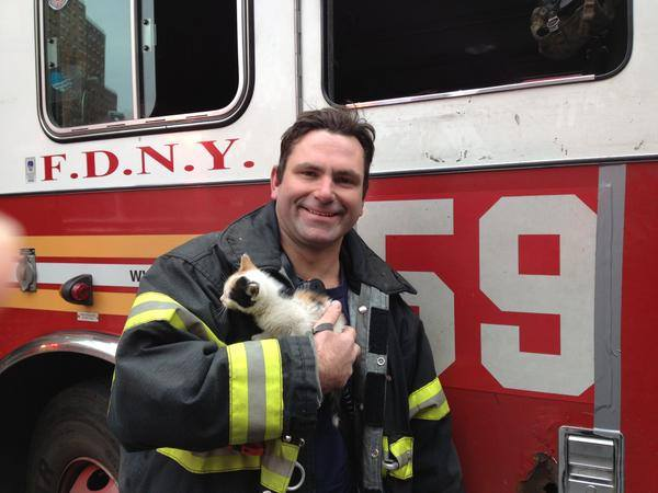 FDNY Makes a Kitty Rescue on The Day's 3rd Alarm in Harlem