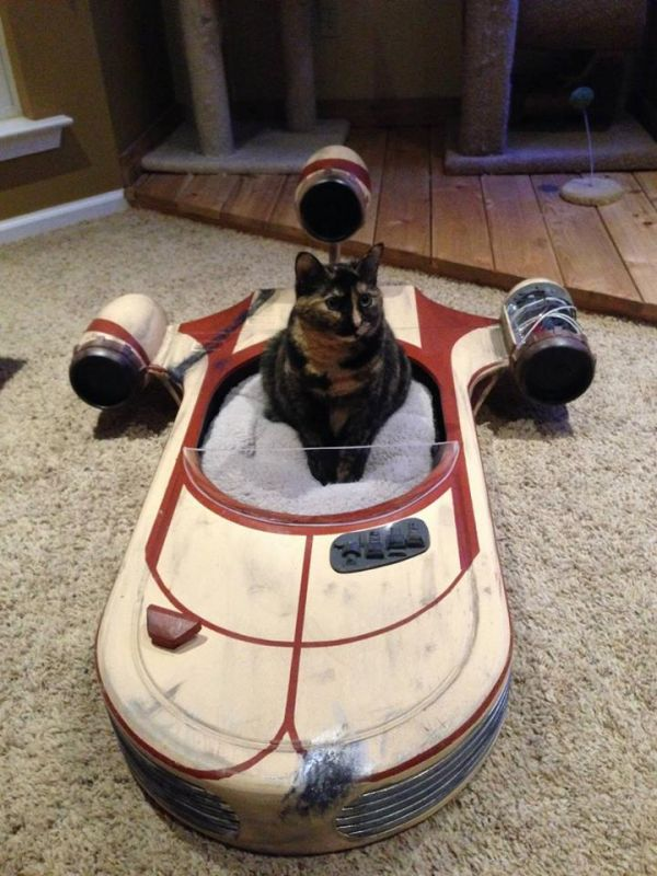 Check out this Star Wars Landspeeder Cat Bed!