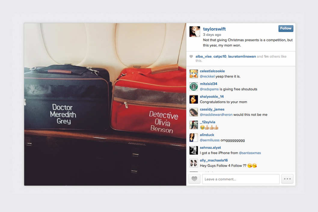 Taylor Swift Likes her Cats to be Professional and Organized