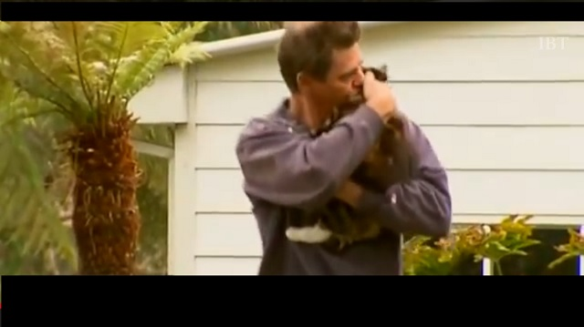 Cat saves man from fire
