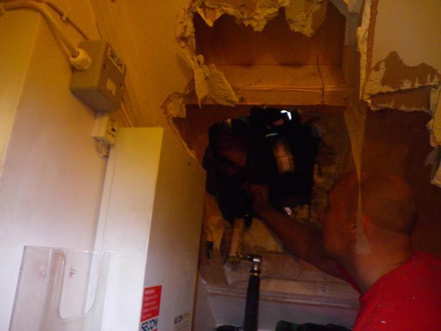 Firefighters Rescue Kitten Trapped in Wall