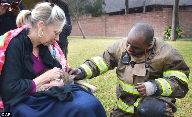 Firefighters Save Stubby the Cat from a House Fire with a Tiny Oxygen Mask