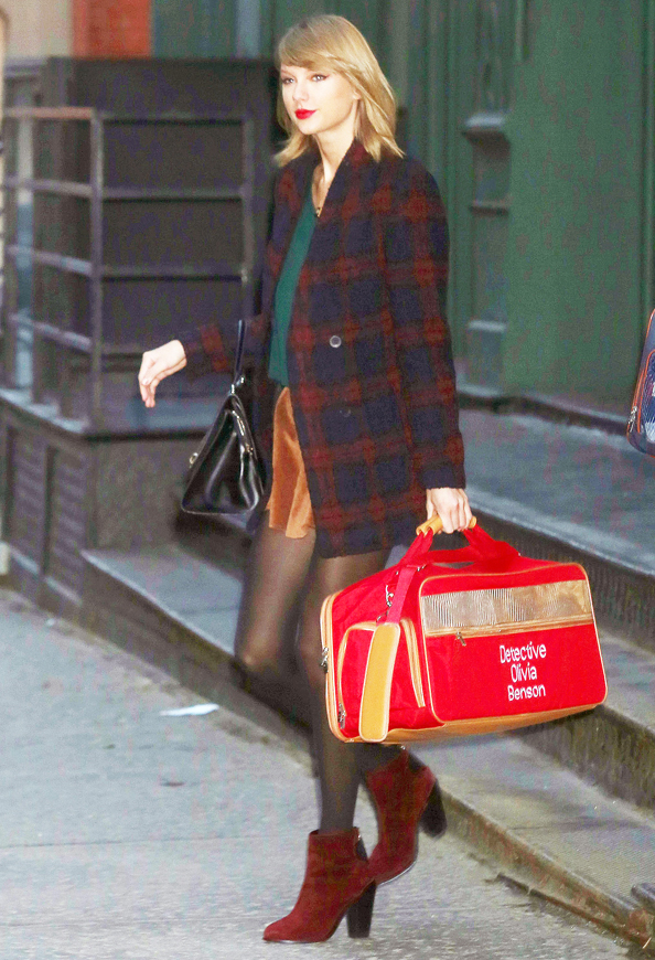 Taylor Swift Totes Cat Benson in the best Personalized Pet Carrier