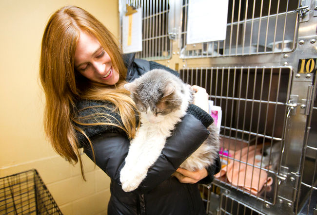 Woman Finds Her Lost Cat after 4 Years in a Shelter