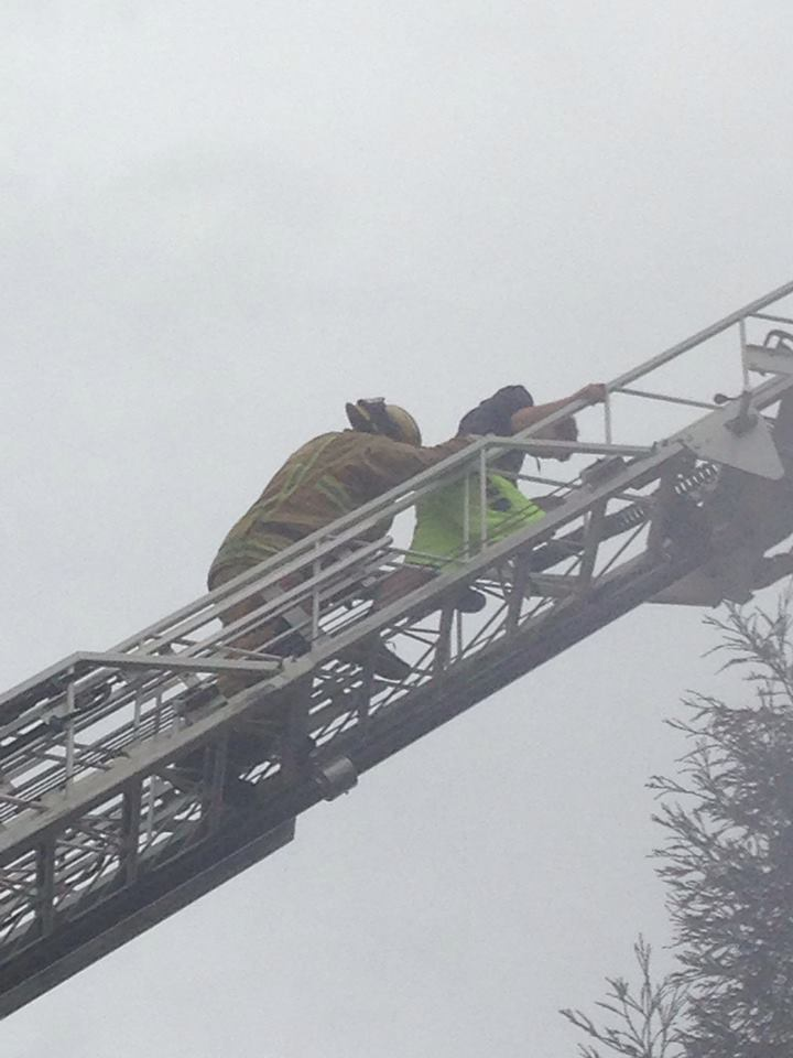 Firefighters Save Teen Rescuer and Cat from a Tree