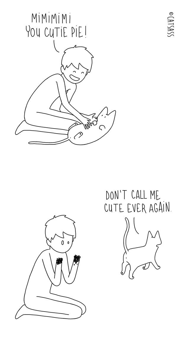 Did This Cartoonist Completely Capture The Agony Of Living With A Cat?