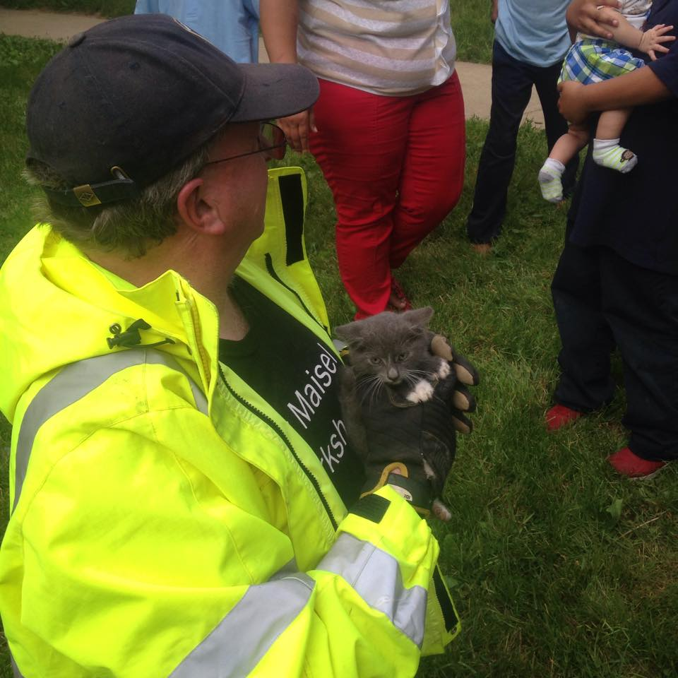 Little Girl Comes to the Rescue for Trapped Kitten