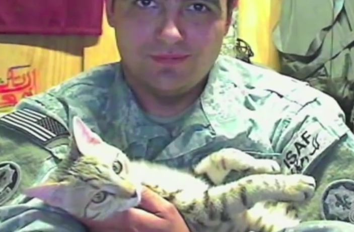 Cat Saves This Soldier's Life and is Rewarded By Getting a Forever Home