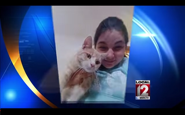 Missing Cat Reunited with Family After Being Seen on Television