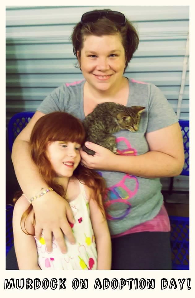 Blind Kitten Finds a Home after Thousands of Facebook Shares