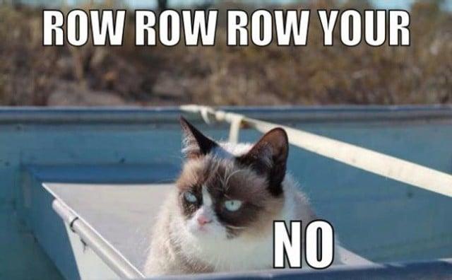 110 640x396 10 of the funniest grumpy cat memes