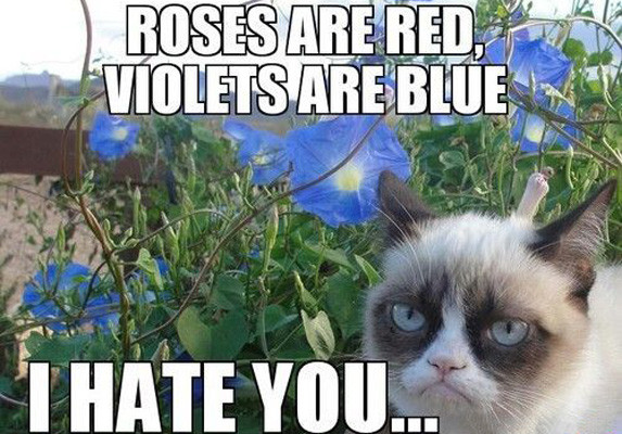 I Hate You Poems For Her: 10 Of The Funniest Grumpy Cat Memes