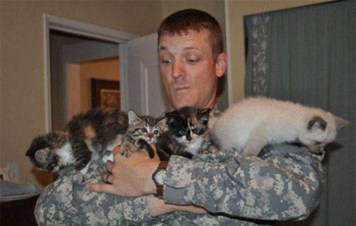 Soldiers Spending Time Cuddling with Cats