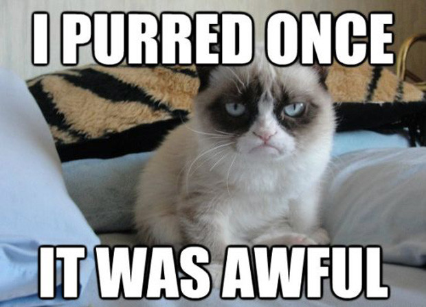 Funny Memes For Lovers : 10 of the funniest grumpy cat memes