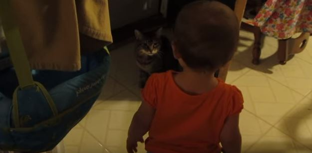 You Have To Listen To This Baby and Kitten Speaking