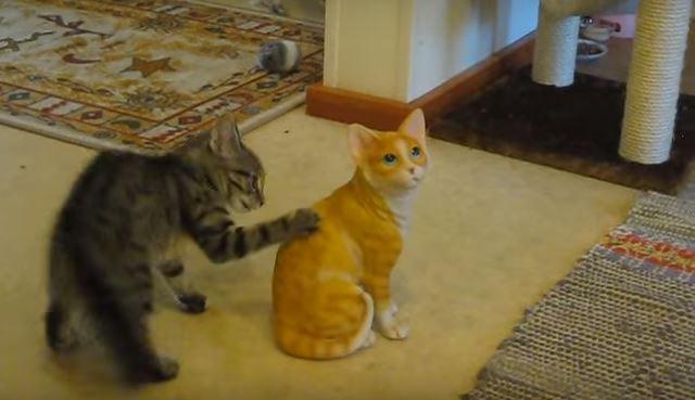 Kitten Takes Down Ceramic Kitten in Fit of Jealousy