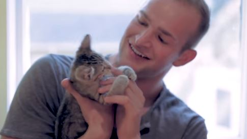 Giant Men Meeting Tiny Kittens Is Even Cuter Than You'd Imagine It To Be