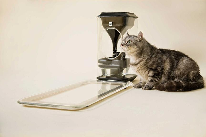 10 Cool Gadgets to Keep Your Pet Happy