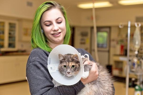 Cat's Amazing Spirit Helps Overcome Broken Bones