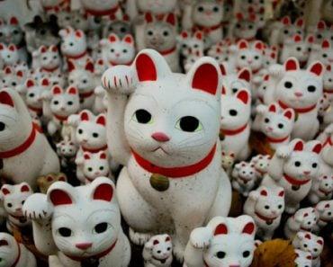 Maneki Neko: Five Fast Facts about this Cat Charm