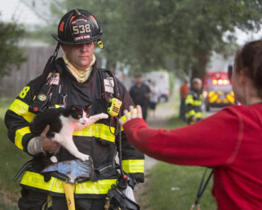 20 Amazing Photos of Cats With Firemen And the Stories to Match