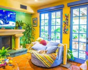 Man Who Loves Cats Transforms Home Into Feline Playland