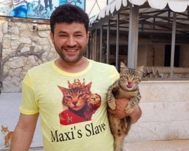 Cat Man of Aleppo