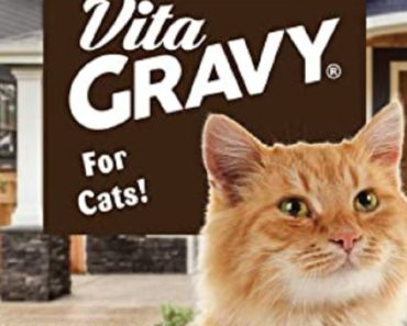 Should You Be Giving Vitagravy to Your Cat?